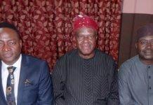 Nigerian-American Chamber of Commerce Chairman