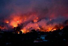 greece-wildfires