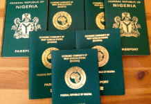 Nigeria New International Passport