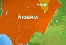 yobe-state-map